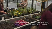 #EcoPoints...Kids in the Greenhouse