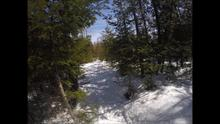 ECO-POINT ACTIVITY...Video on Snowshoeing in Nelson
