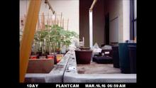 Plantcam Green House Time-Lapse